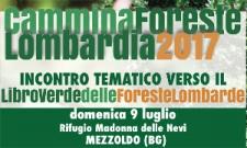 Evento CamminaForeste 2017: Dissesto idrogeologico e difesa del suolo: il ruolo di protezione delle foreste
